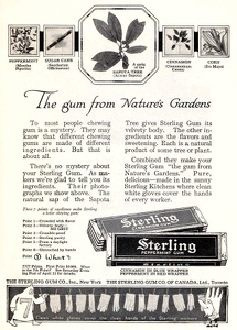 Sterling Spearmint Gum -1916A