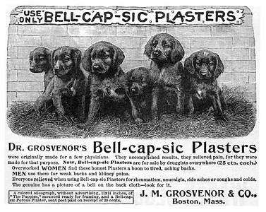 Bell-Cap-Sic Plasters -1893A