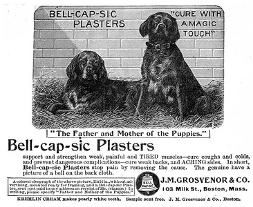 Bell-Cap-Sic Plasters -1894A
