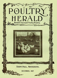Poultry Herald 1907-12