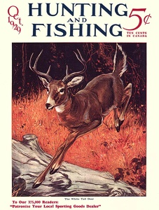 Hunting and Fishing 1929-10