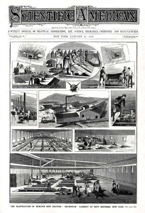 Scientific American 1882-01-21